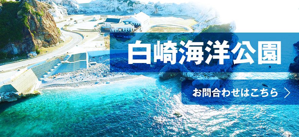 banner_shirasaki