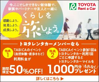 2_toyota_tabica_320x266